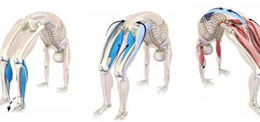 Umetnost progresivnih zaklonov: anatomija in praksa