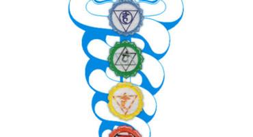 MEDITACIJE NA ČAKRE-ČAKRA DHARANA
