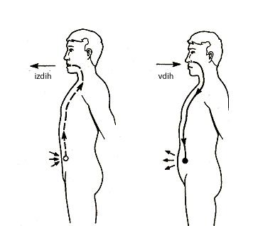 abdomen-breathing